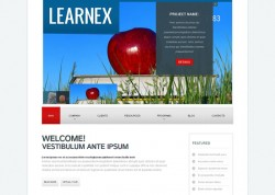 Learnex